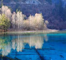 Five Flower Lake, Jiuzhaigou Valley, Sichuan, China by Ka Hei Tsui
