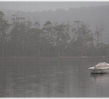 Tasmania Fog by Andrew Wilson