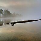 Misty Dawn by Karl Williams