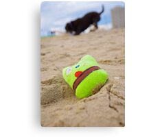 Squeaky Toy Canvas Print