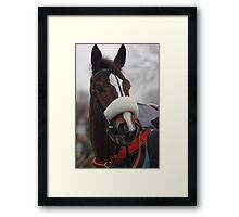 Kauto Star Framed Print