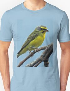Fluffy Canary T-Shirt