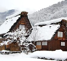 White Christmas-Shirakawa village,Japan by patcheah