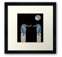 Kingfisher with rose Framed Print