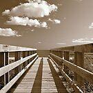Lawrencetown Boardwalk by NovaScOcean