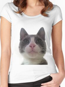 Gracie Kitty Women's Fitted Scoop T-Shirt