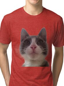 Gracie Kitty Tri-blend T-Shirt