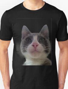 Gracie Kitty T-Shirt