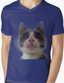 Gracie Kitty Mens V-Neck T-Shirt