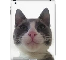 Gracie Kitty iPad Case/Skin