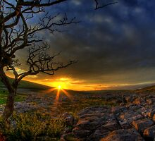 Sunset over limestone pavement, Malham by Guy Carpenter