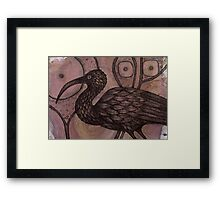 The Ibis Framed Print