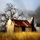 Keep Out - Sofala Road by Bev Woodman