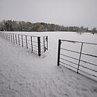Snow Gate - Attingham, Shropshire  by Kris Extance