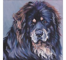 Tibetan Mastiff Fine Art Painting Photographic Print
