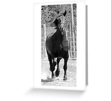 On The Loose Greeting Card