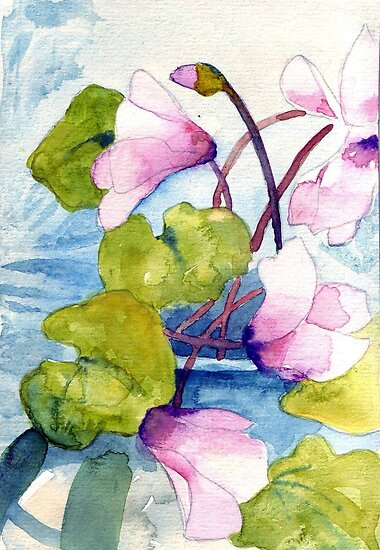 Cyclamen by Val Spayne