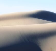 Shifting Sands ~ White Sand Hills by Carla Jensen
