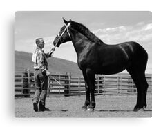 Fabulous Mare Posing Canvas Print