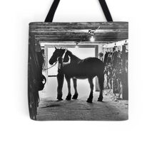 Undressing In The Barn Tote Bag