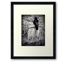 Guardian Framed Print