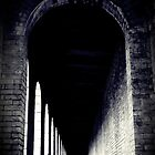Vaulted by Josephine Pugh