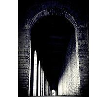 Vaulted Photographic Print