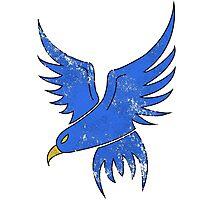 Blue Falcon Photographic Print