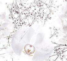 Untitled by NadiaCheema