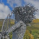 Lady of the hill by Alan Findlater