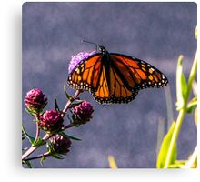 Painterly Flutterbye Canvas Print