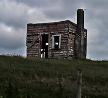 Derelict by Chris Westinghouse