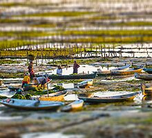 Seaweed Farmers at Nusa Lembongan by JohnKarmouche