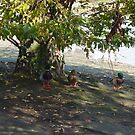 Ducks by Adventures