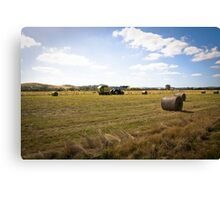 HARVEST TIME AT YAN YEAN Canvas Print