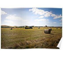 HARVEST TIME AT YAN YEAN Poster
