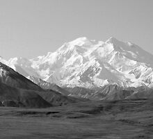 The Road to Denali Black & White by Bob Moore