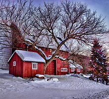 winter in Connecticut by bettywiley