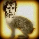 zach rabbit by Xtianna