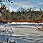 Winter Landscape by ECH52