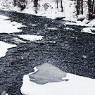 Stream in Snow by barnsis