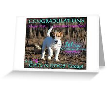 Cats and Dogs Challenge Banner Greeting Card