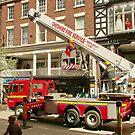 Rescue in Chester by AnnDixon