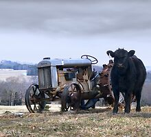 Fordson and a New Driver by BCallahan