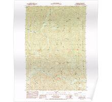USGS Topo Map Oregon Quartzville 281198 1985 24000 Poster