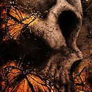 Skull With Butterflies by XIthLion