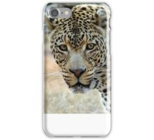 If looks could kill..... iPhone Case/Skin