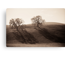 Long Shadows of Winter Canvas Print