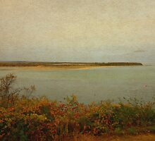 Plum Island by ladygarbanzo