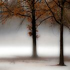 Two Trees by Mary Ann Reilly